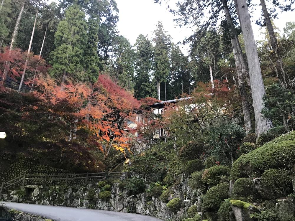 下呂温泉,湯之島館,紅葉